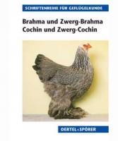 Brahma und Zwerg-Brahma, Cochin und Zwerg-Cochin