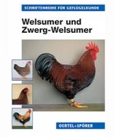 Welsumer und Zwerg-Welsumer