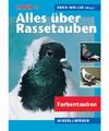 Rassetauben, Bd. 4